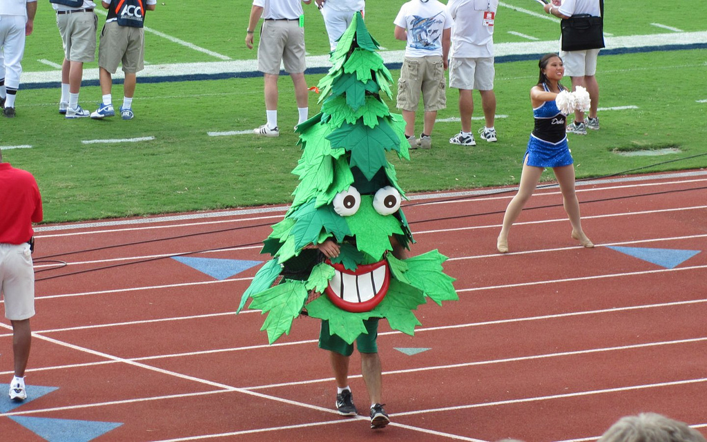 The Stanford Tree Cardinal mascot
