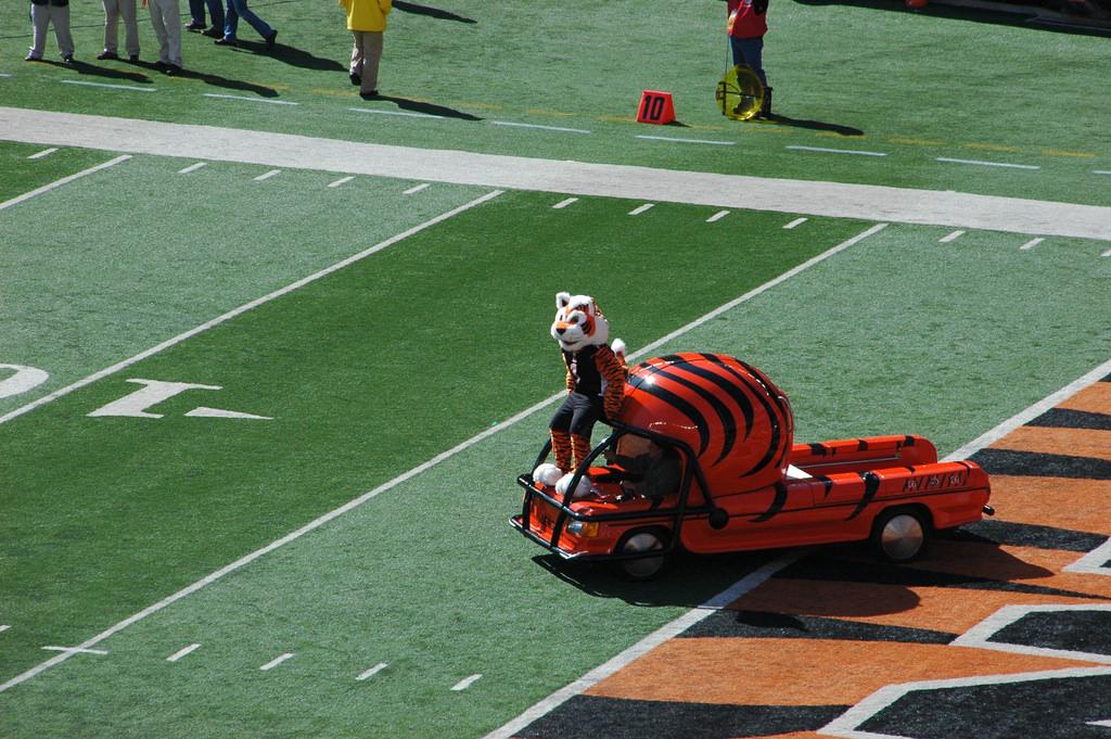 Cincinnati Bengals mascot Who Dey at Paul Brown Stadium