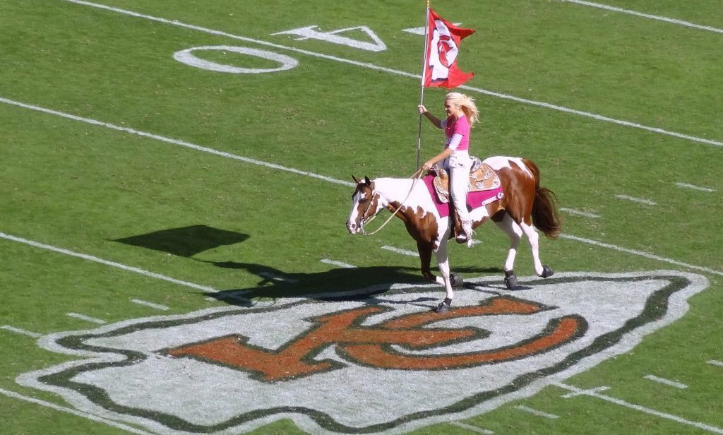 Warpaint pinto horse mascot of the Kansas City Chiefs