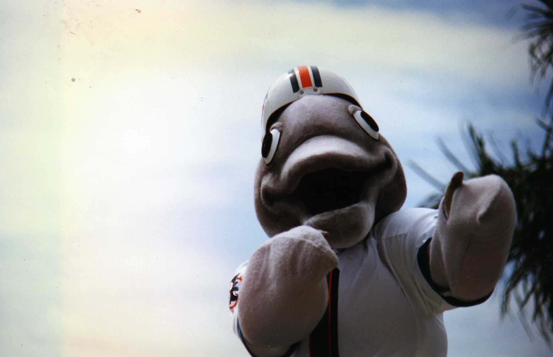 TD mascot of the Miami Dolphins