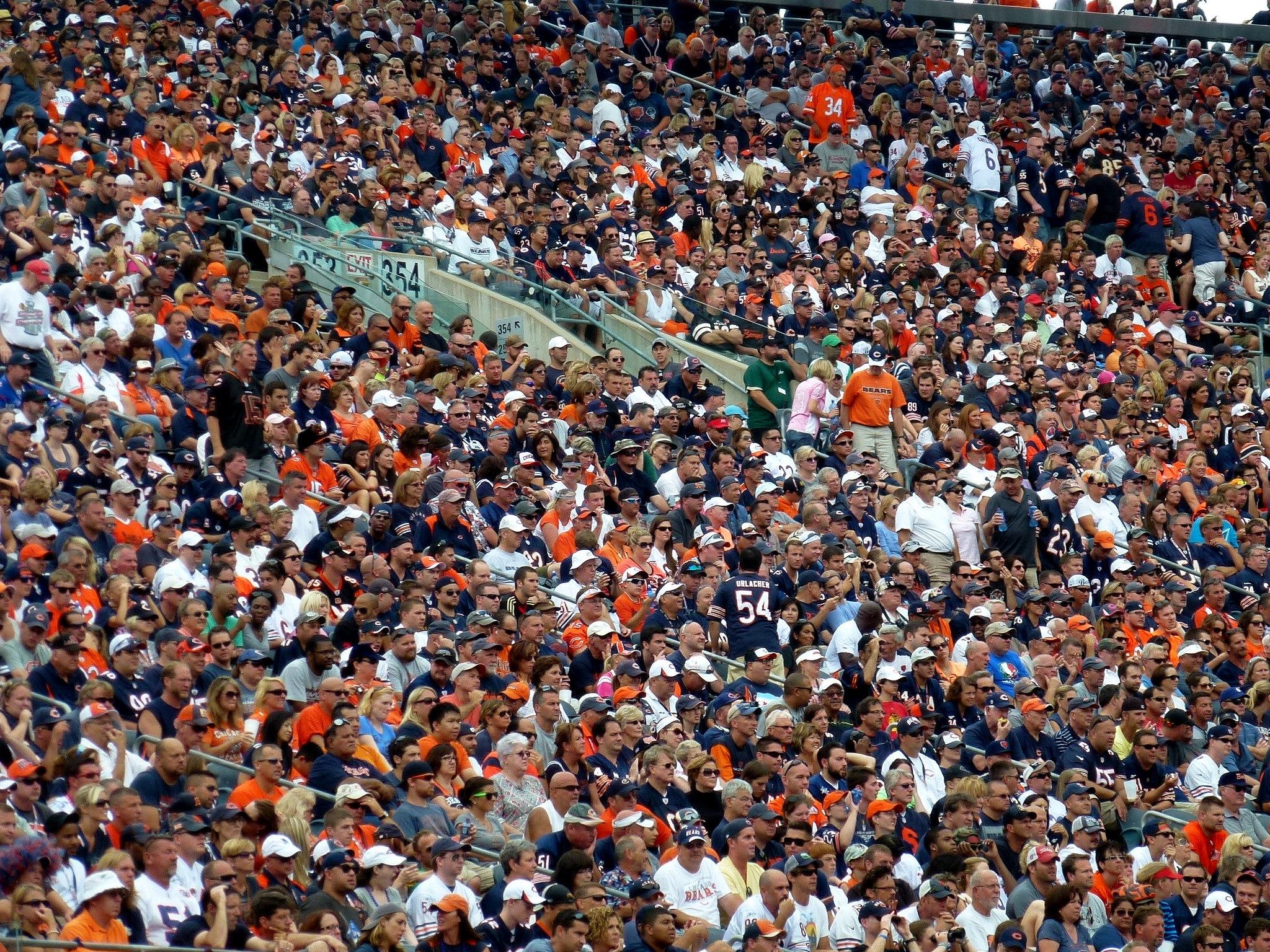 fans cheering at Cincinnati Bengals vs Chicago Bears game