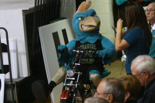 Coastal Carolina Chauncey Mascot