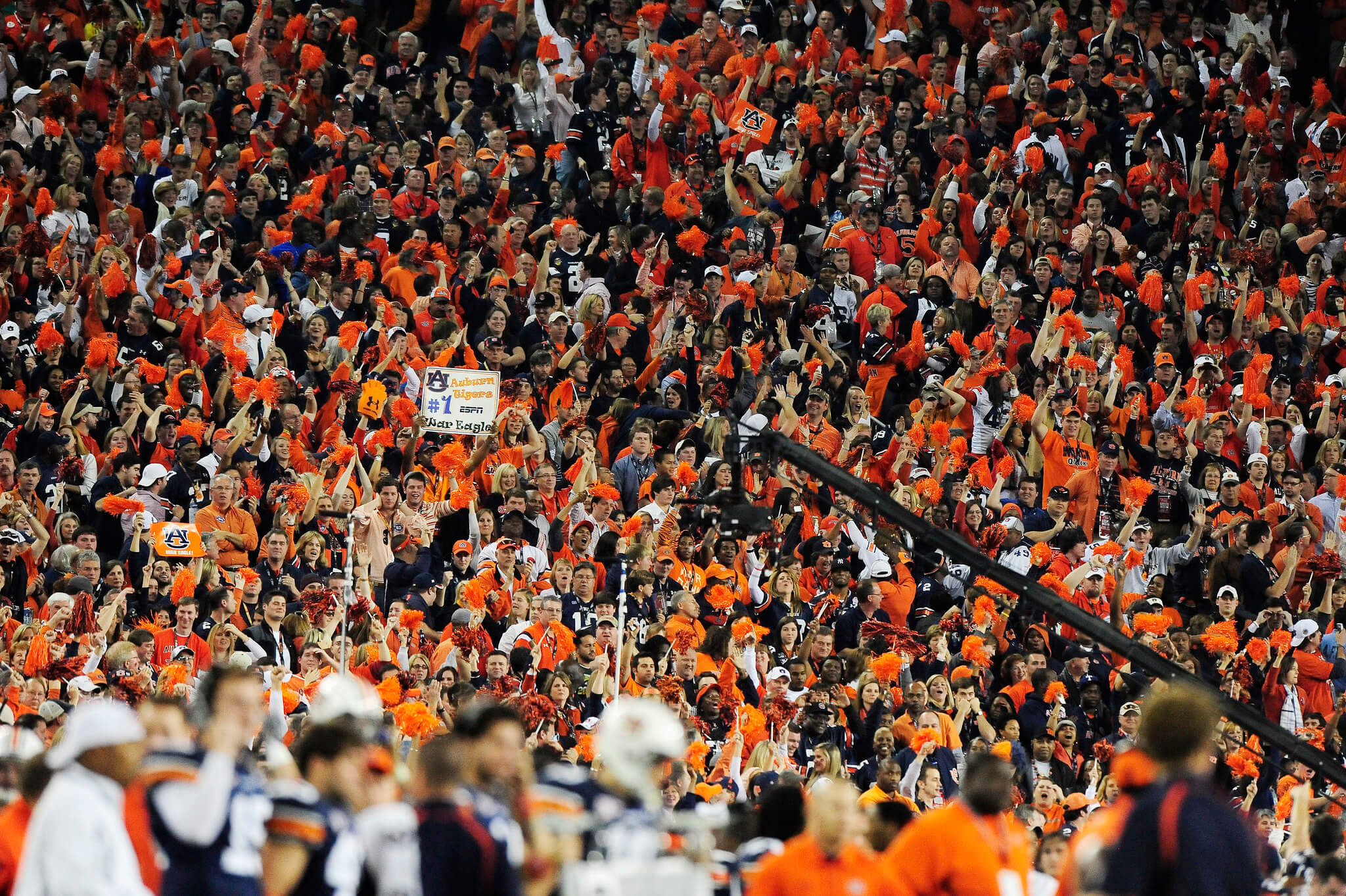 Auburn Tigers fans