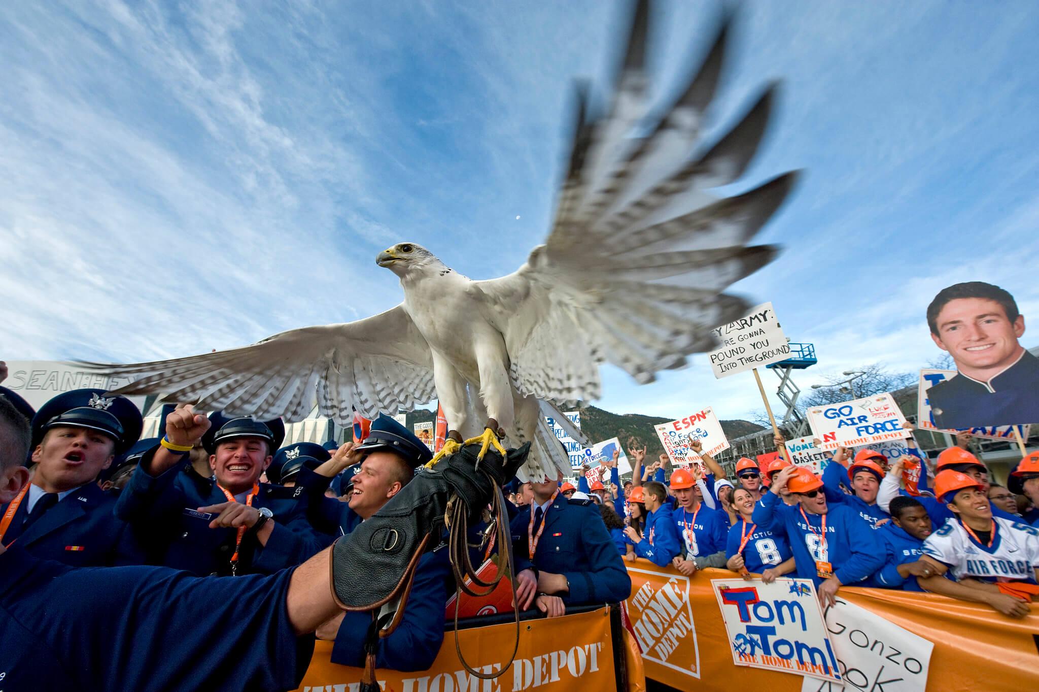 Aurora Air Force Falcons live mascot