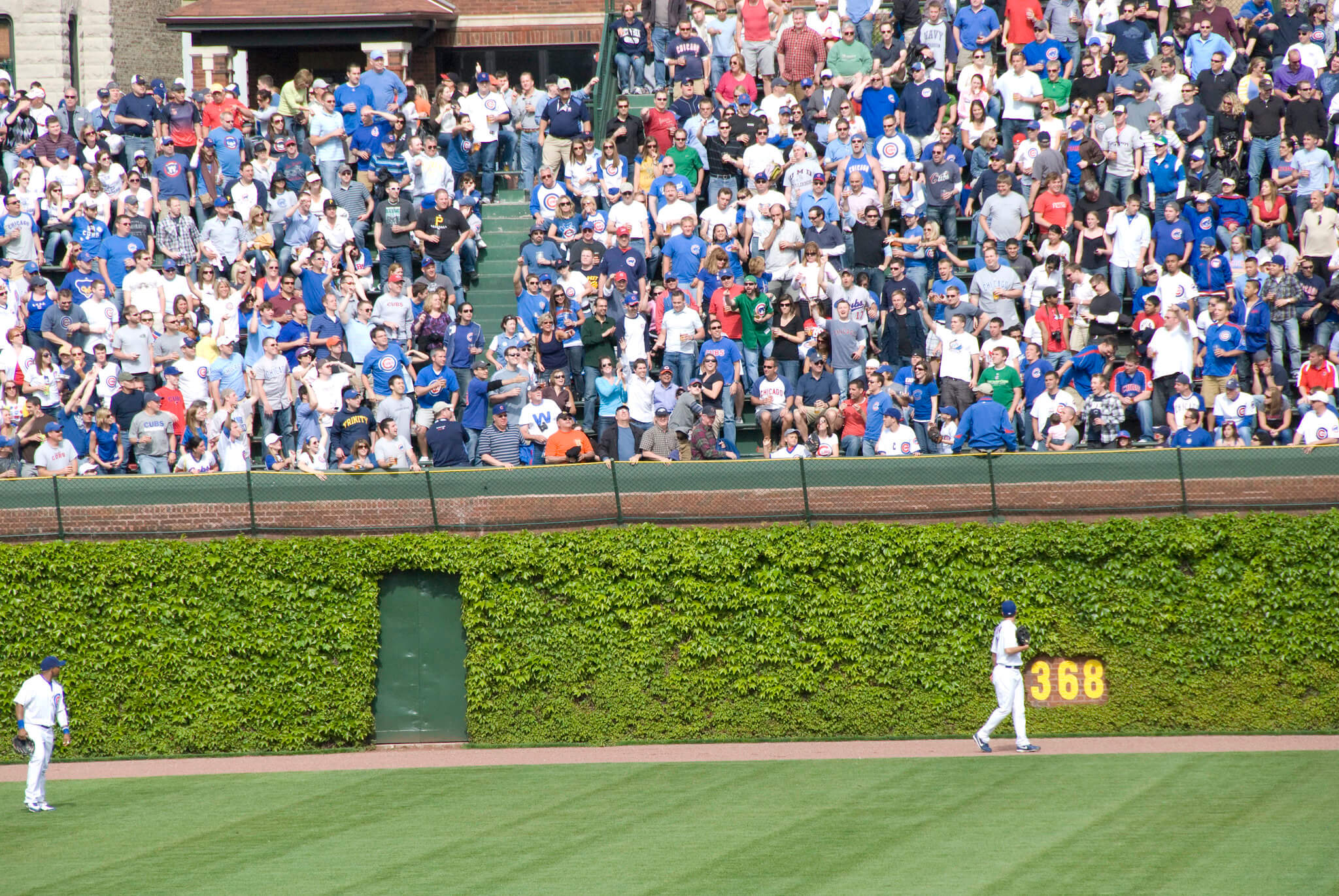 Throwing the Ball Back Chicago Cubs