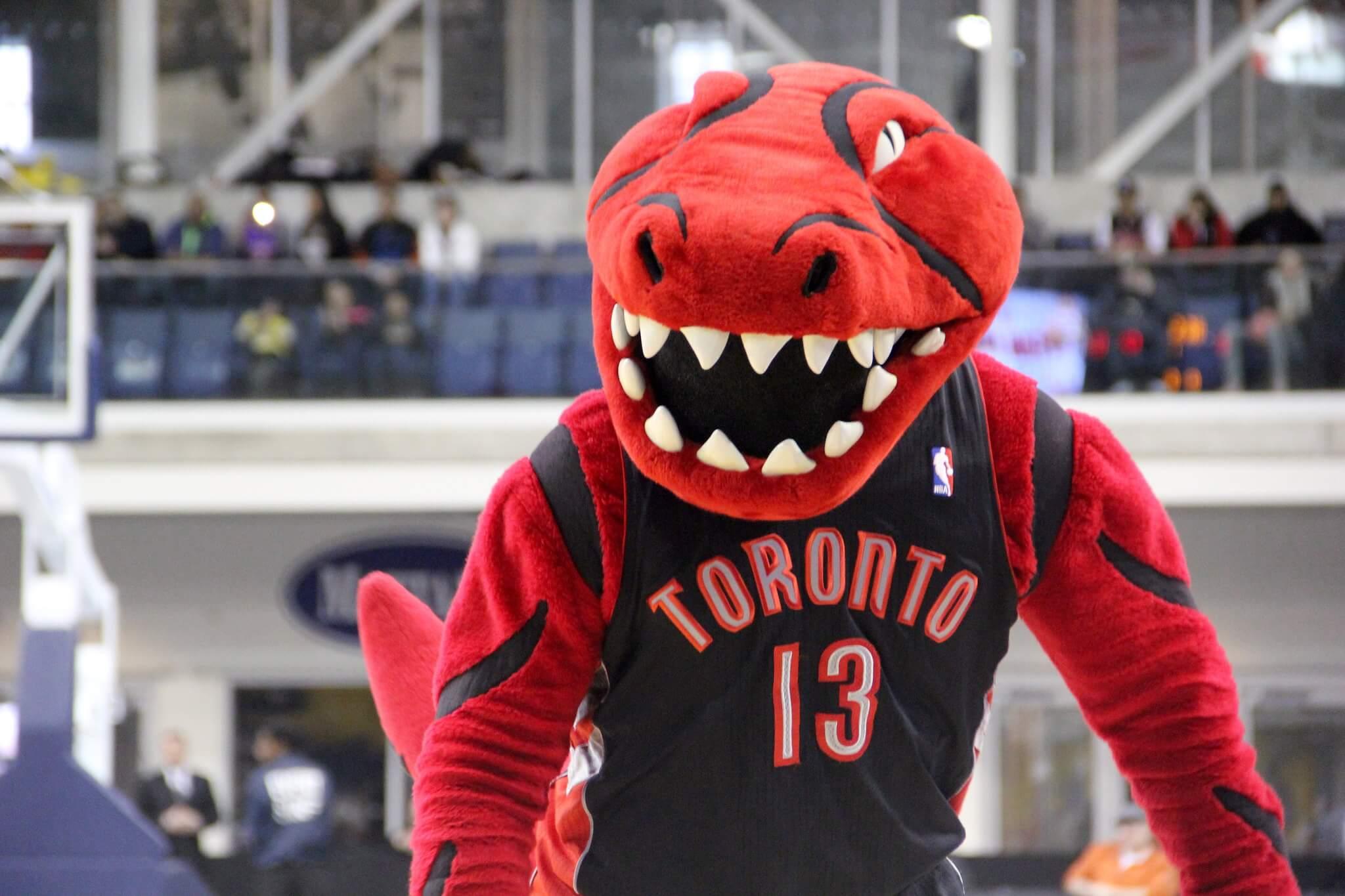 Raptor Toronto Raptors mascot