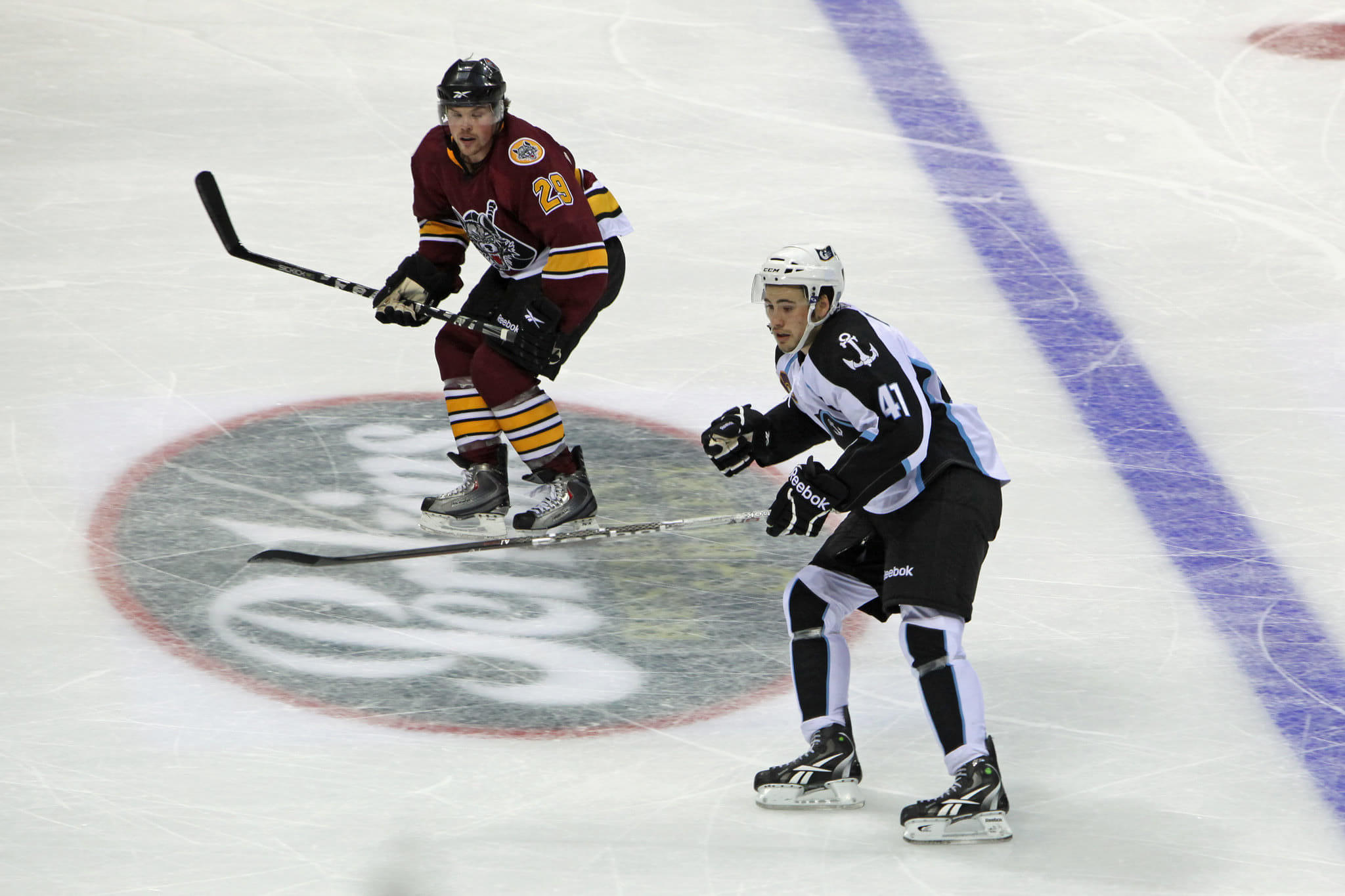 Milwaukee Admirals vs Chicago Wolves AHL hockey rivalry